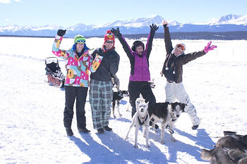 dogsledding activity vail beaver creek keystone frisco breckenridge copper mountain colorado