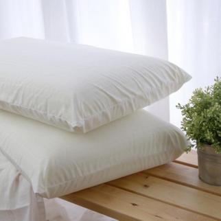 美國進口乳膠枕