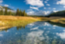Mountains_golden meadow.jpg