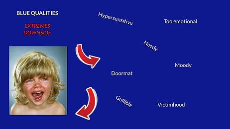 CC website blue qualities extreme downsi