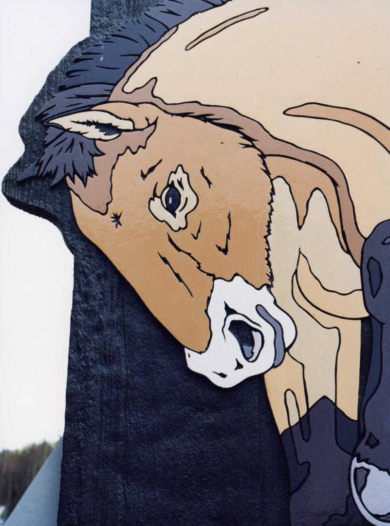 Horse close up.jpg