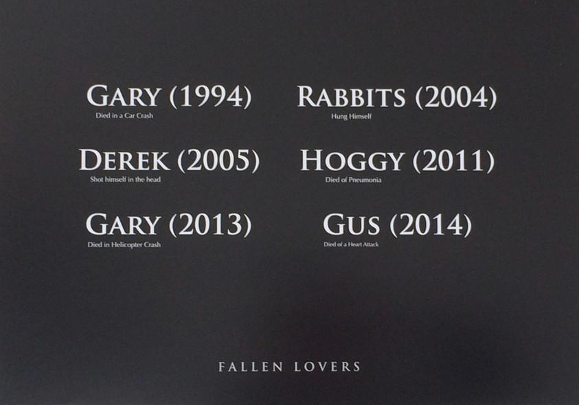 Fallen Lovers (2014)