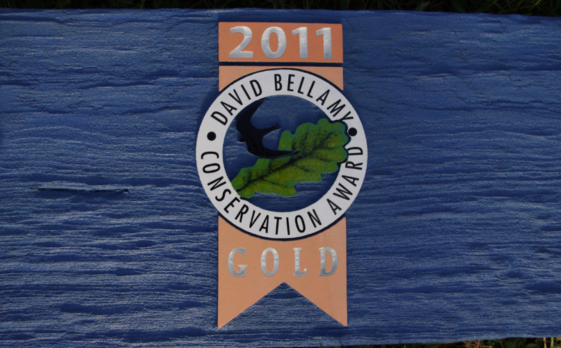 Detail of handpainting from sign board.