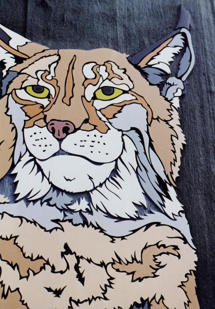 HWP Lynx head.jpg