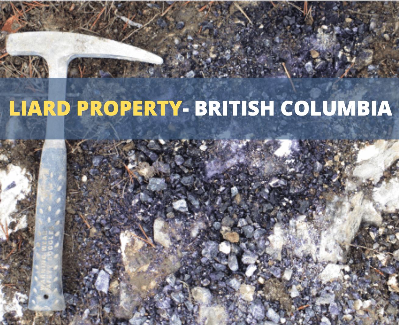 Liard Property - British Columbia