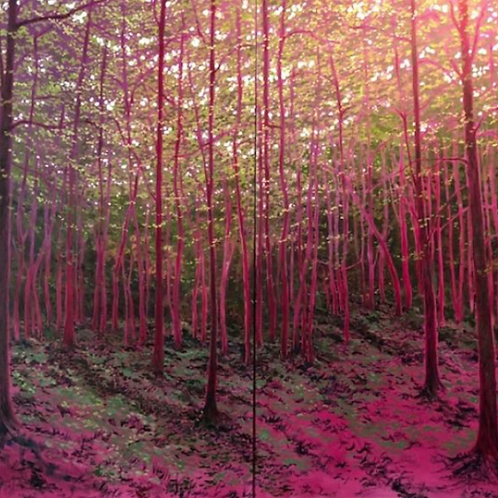 Large Pink Forest #2