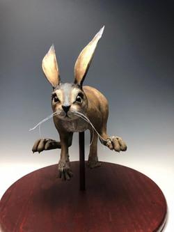 rabbit1-580x773.jpg