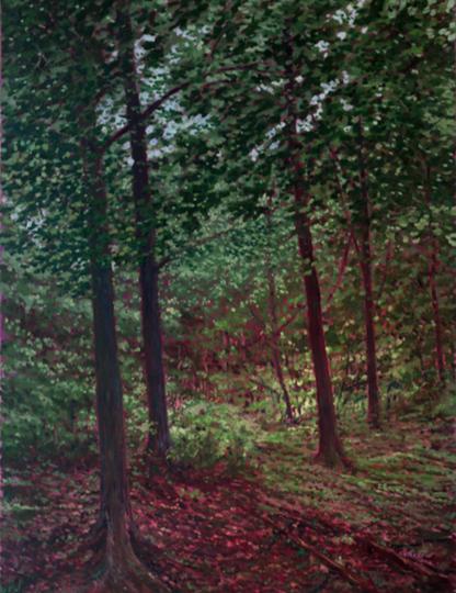 Highland Park Forest