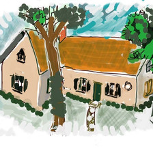 nail house cartoon.jpg