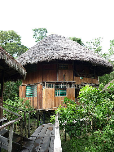 Tours cuyabeno in Ecuador