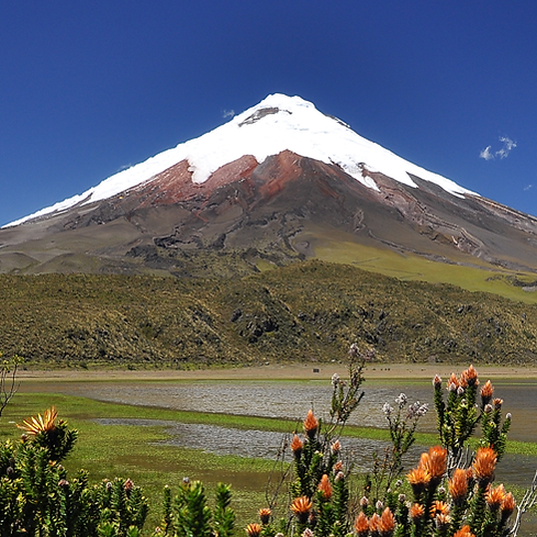 Tours-cotopaxi-ecuador