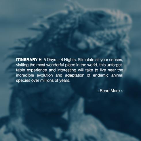 economic-galapagos-tours
