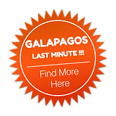 Galapagos Last Minute