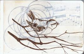 birdSketch_small.jpg
