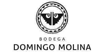 Domingo Molina Logo.jpeg