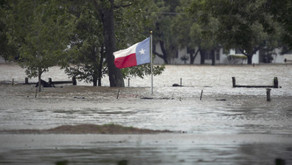 Harvey reveals the limits of limited government