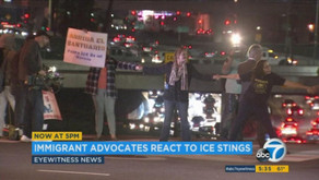 Hundreds of immigrants arrested in 'routine' U.S. enforcement surge. The Humanity Party® condemn...