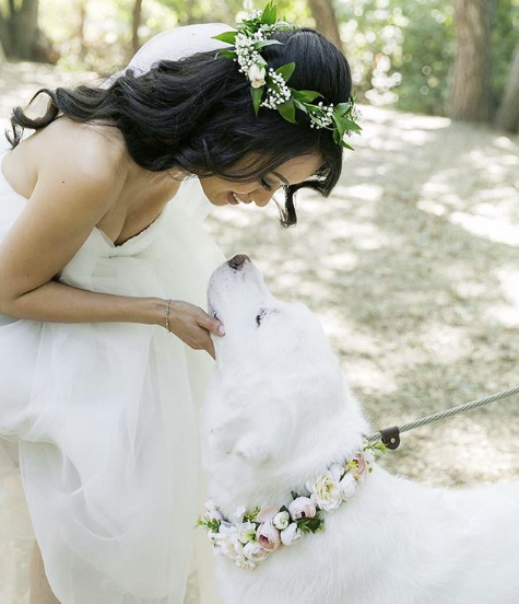 Bride_With_Pup