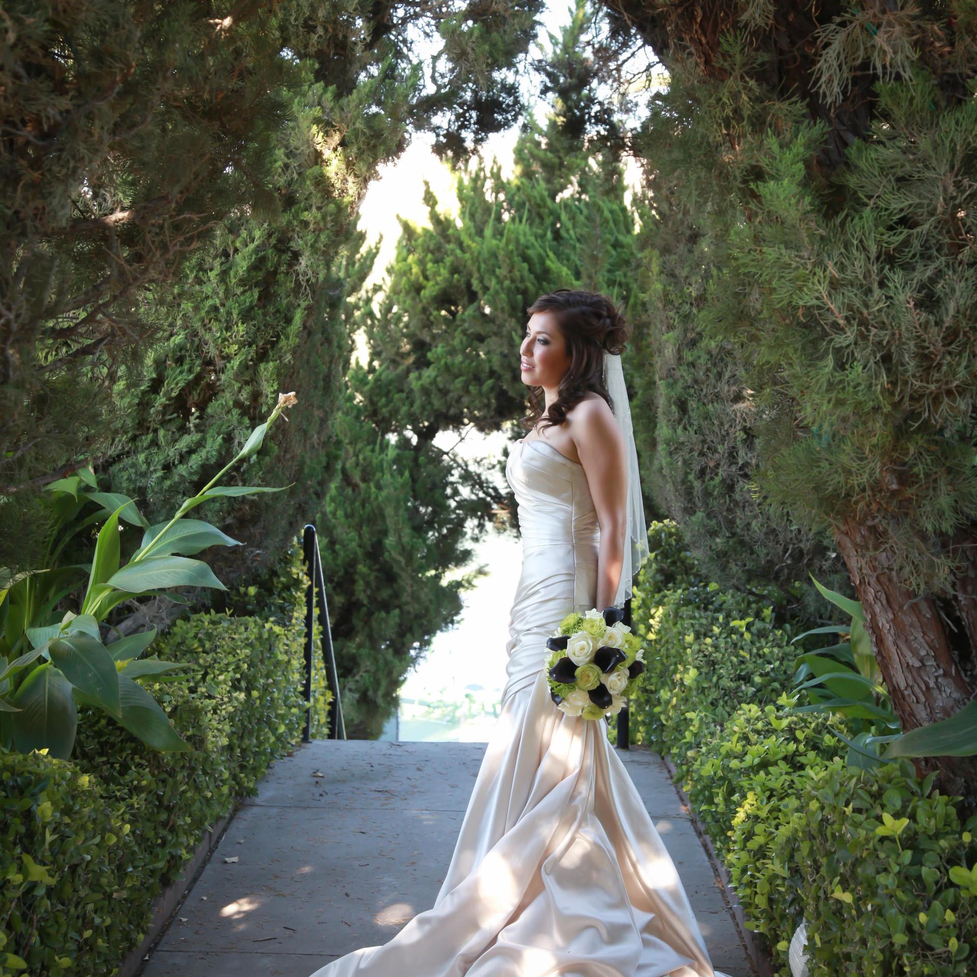 Bridal Magic