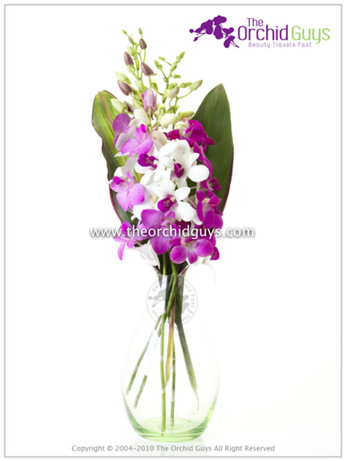 Bouquet - 3 Dendrobium Mix