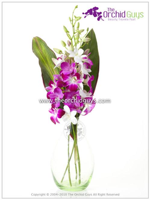 Bouquet - e Dendorbium Mix