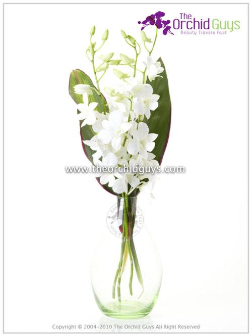 BOuquet -3 Big white Jumbo