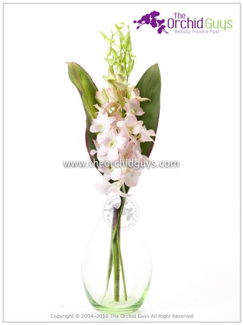 Bouquet 3 Suree Peach