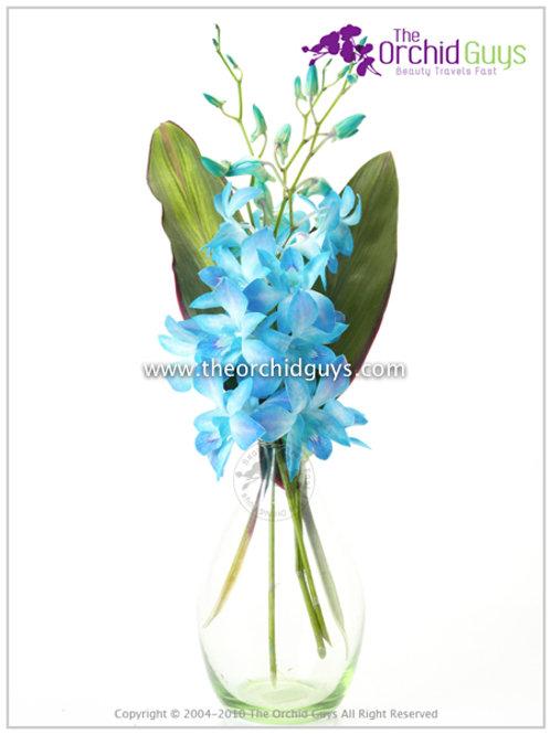 Bouquet -Dyed Blue Missteen(3)