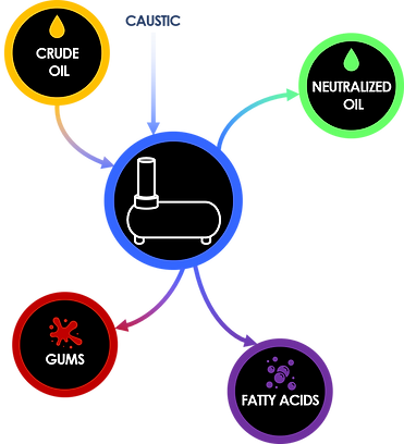 Edible Oils Process for website.png