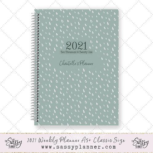 2021 Planner (Raindrops Cover)