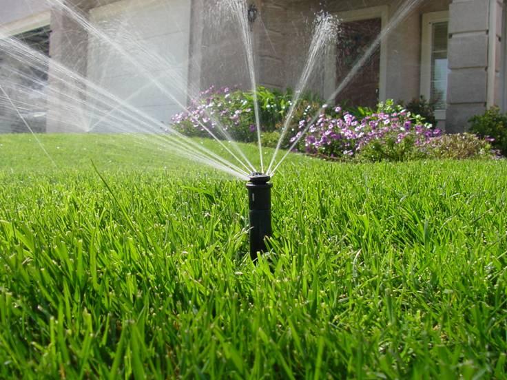 lawn-irrigation-1.jpg