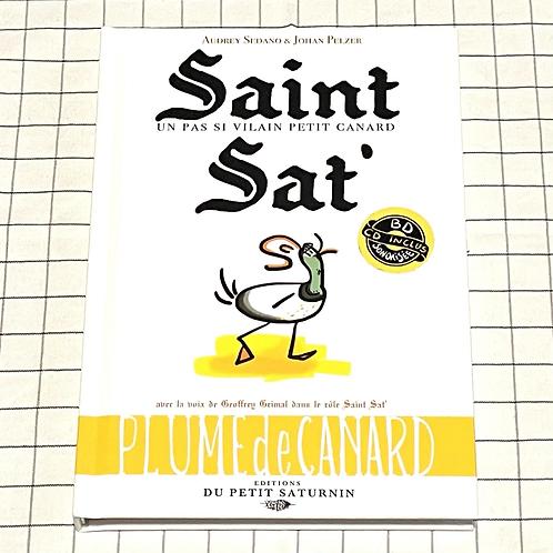 Saint Sat', un pas si vilain petit canard