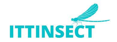ITTINSECT (11).png