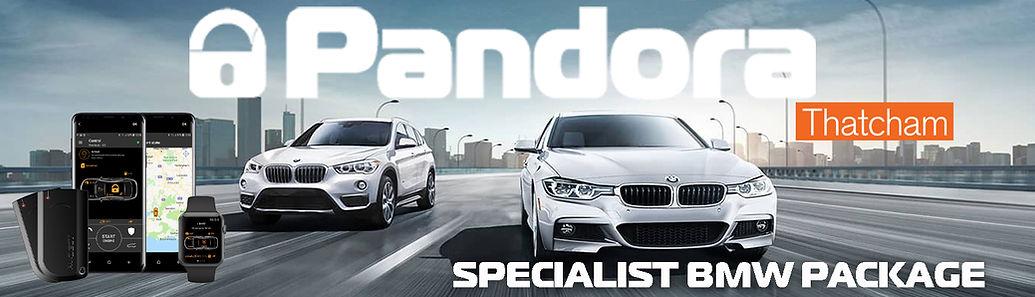 BMW car alarm pandora specialist pacage