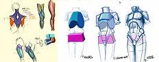 anatomie_cours_dessin_academique_cours_d