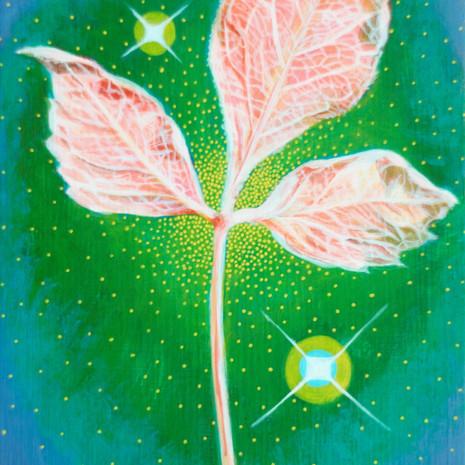 Little Leaf