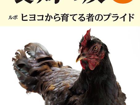 雑誌記事執筆のお知らせ(養鶏の友12月号)