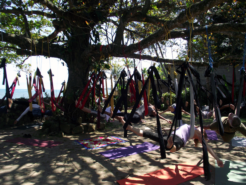 Tree_Redaya_Liliane_Brito_Yogaya_Ilhabela_Yoga1.jpg