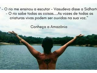Conheça a Amazônia e pratique Yoga Integral