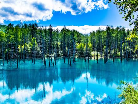 北海道で行ってみたい場所