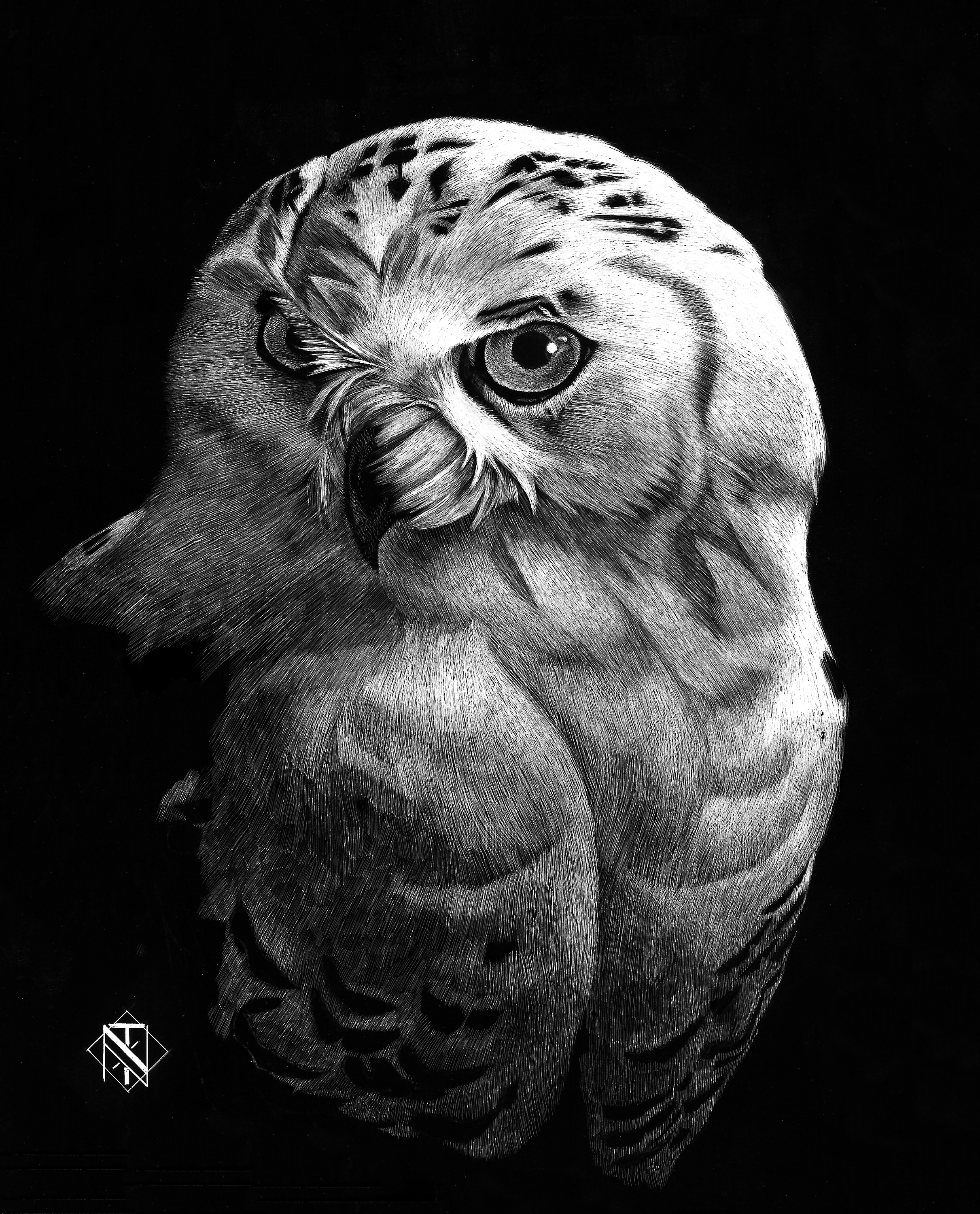 Snowy White Owl (SOLD)