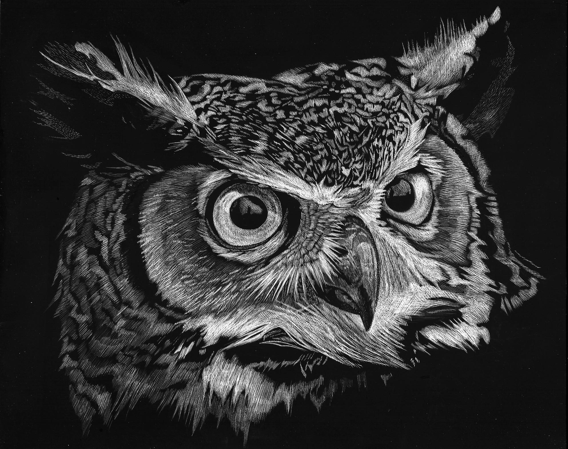 Horned Owl (SOLD)
