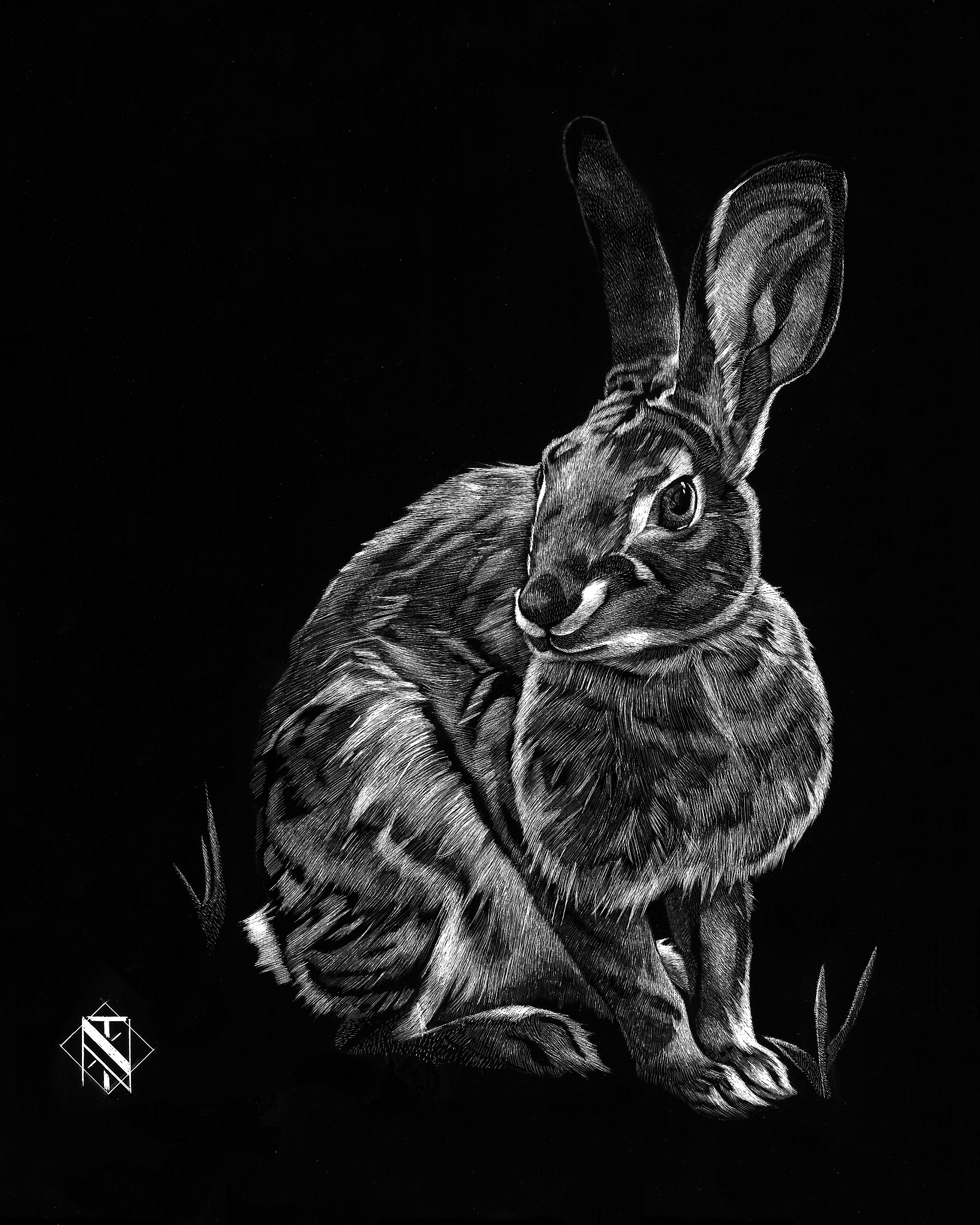 Rabbit (SOLD)