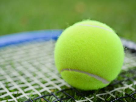 車椅子テニスの魅力