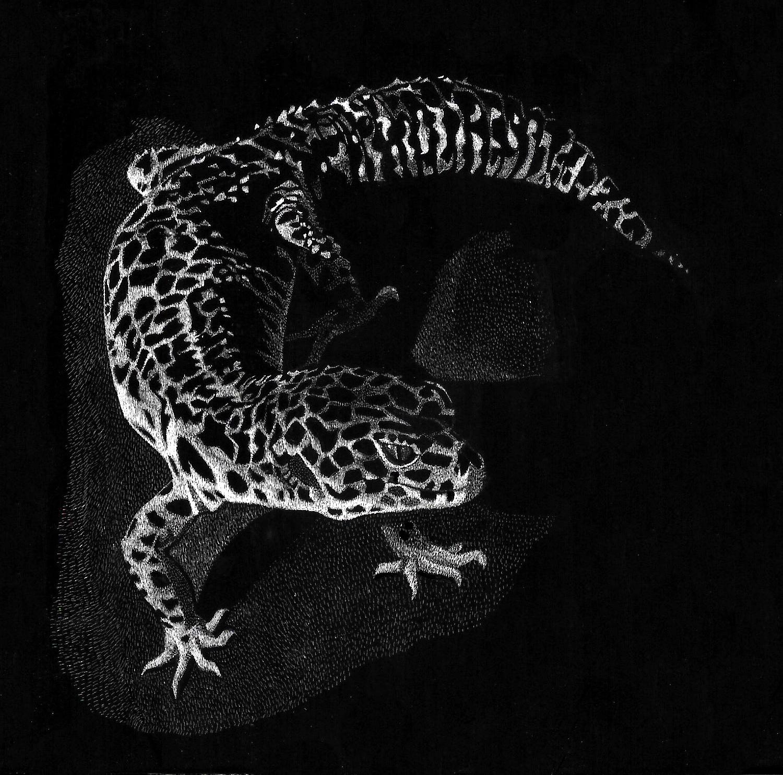 lepard geko