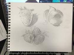 frute drawing