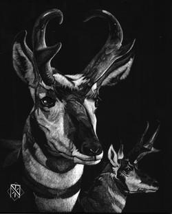 Prong Horns