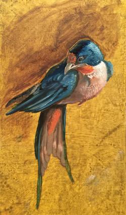 oil swallow