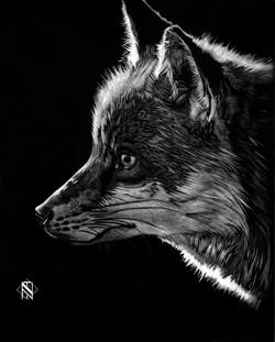 Fox (SOLD)