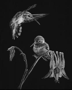 Humming Birds (SOLD)